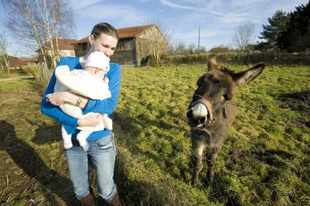 mammas: mother with her child looking at donkey, Champagne, France