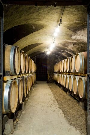 Ch�teau de Cary Potet (wine cellar), Buxy, Burgundy, France photo