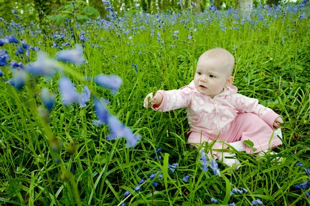 baby girl sitting on meadow Stock Photo - 7954964