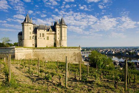 viniculture: Chateau de Saumur, Pays-de-la-Loire, France