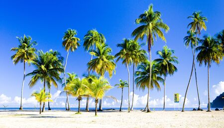 Maracas Bay, Trinidad Stock Photo