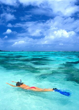 indian ocean: snorkeling