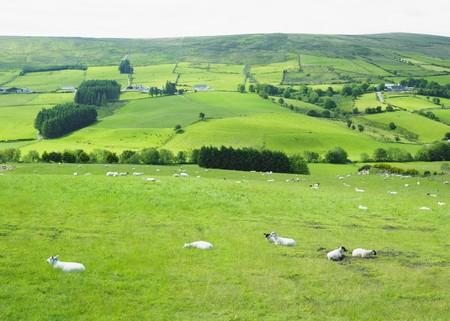 Sperrin Mountains, County Tyrone, Northern Ireland photo