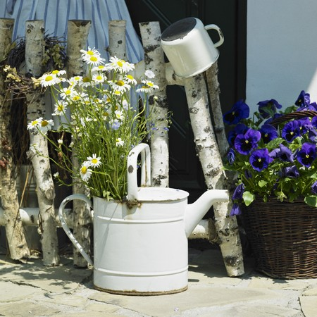 still lifes: watering can