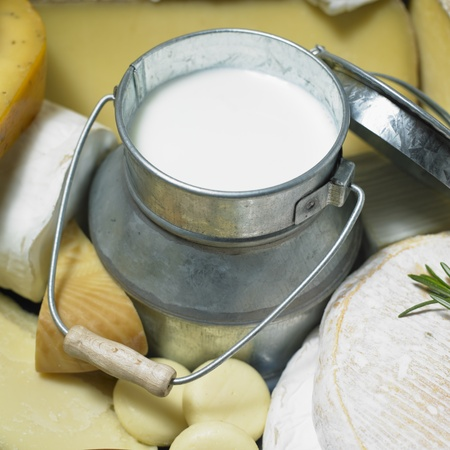aliments: cheese still life with milk Stock Photo