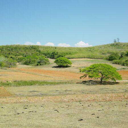pinar: Pinar del Río Province, Cuba