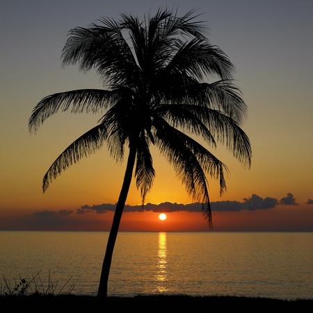 sunset over Caribbean Sea, Mar�a la Gorda, Pinar del R�o Province, Cuba photo