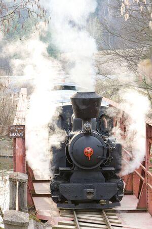 logging railroads: ultimo giorno di servizio di CKD vapore locomotiva n. 5 (1.4.2008), linea ferroviaria Ciernohronska, Slovacchia Archivio Fotografico