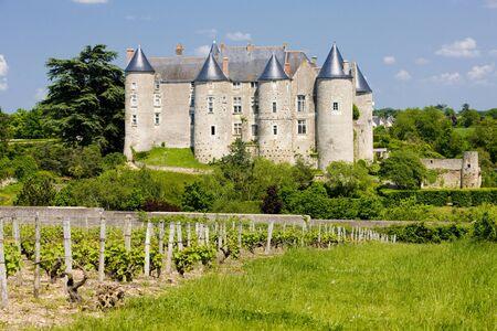 viniculture: Luynes Castle with vineyard, Indre-et-Loire, Centre, France Stock Photo