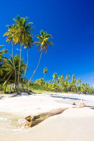 Cumana Bay, Trinidad Stock Photo - 8484365