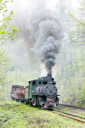 narrow gauge railway, Banovici, Bosnia and Hercegovina photo