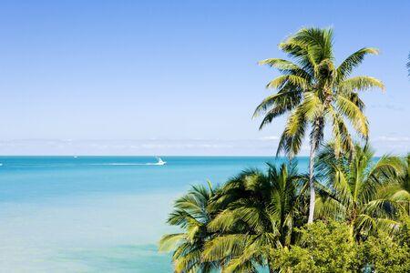 florida landscape: Florida Keys, Florida, USA