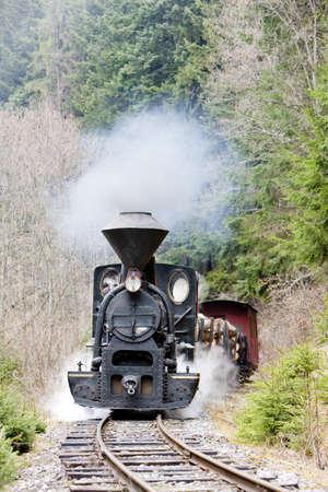 steam train, Ciernohronska Railway, Slovakia photo