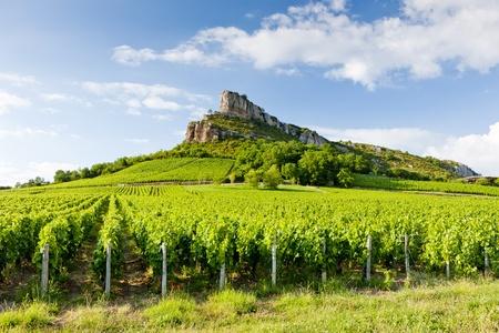 Solutre Rock with vineyards, Burgundy, France
