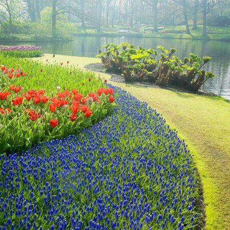 garden pond: Gardens, Lisse, Netherlands