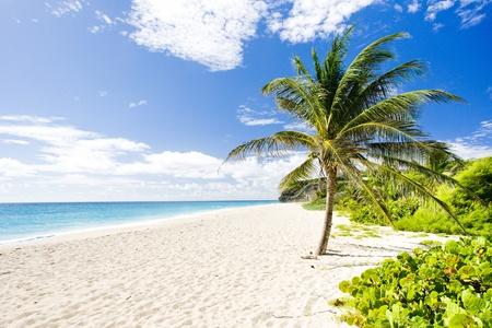 Bahía de foul, Barbados, Caribe