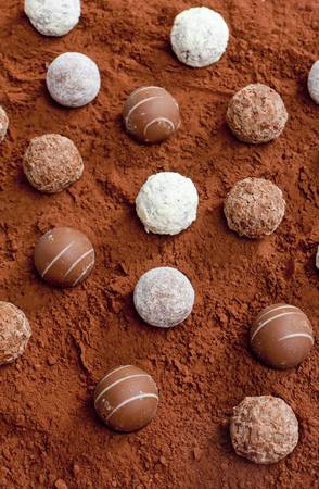 pralines: pralines in cocoa Stock Photo