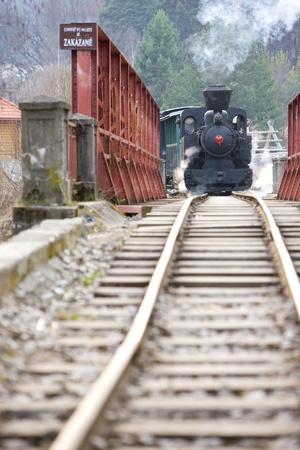 logging railroads: ultimo giorno di servizio della CKD vapore locomotiva n. 5 (1.4.2008), ferrovia Ciernohronska, Slovacchia