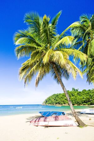 Castara Bay, Tobago Stock Photo