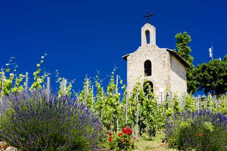 grand cru vineyard and Chapel of St. Christopher, L�Hermitage, Rh�ne-Alpes, France photo
