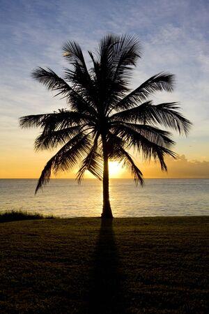 sunset over Caribbean Sea, Barbados photo