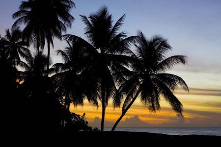 sunset over Caribbean Sea, Turtle Beach, Tobago Stock Photo - 8878996