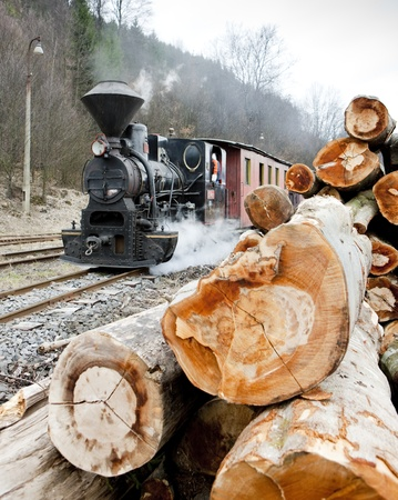 logging railroads: vapore treno, Ciernohronska Railway, Slovacchia Archivio Fotografico