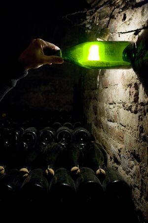 viniculture: Janisson Baradon Champagne Winery, �pernay, Champagne Region, France