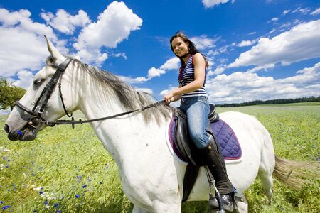 riding horse: equestrian on horseback