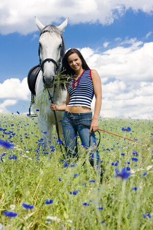 dark haired woman: equestrian with a horse on meadow Stock Photo