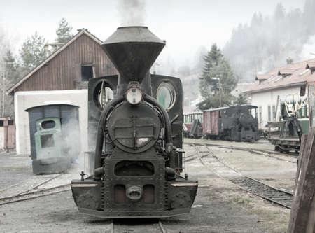 logging railroads: vapore locomotiva, Ciernohronska Railway, Slovacchia Archivio Fotografico