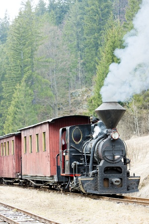 wood railroad: steam train, Ciernohronska Railway, Slovakia