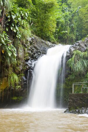 grenada: Annadale Falls, Grenada