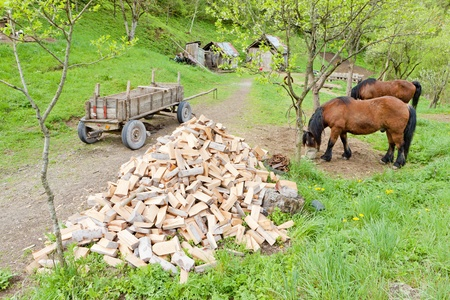 hercegovina: countryside of Bosnia and Hercegovina