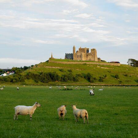 county tipperary: Rock of Cashel, County Tipperary, Ireland Stock Photo