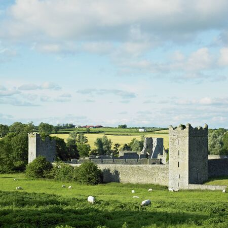 friaries: Kells Priory, County Kilkenny, Ireland