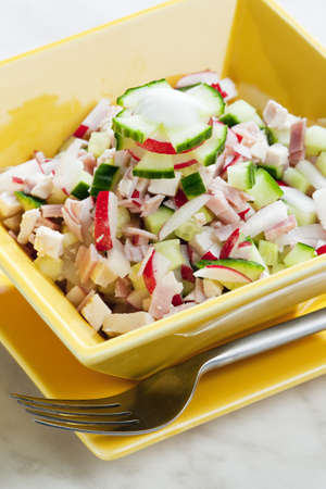 alimentation: chicken salad with radishes and cucumber