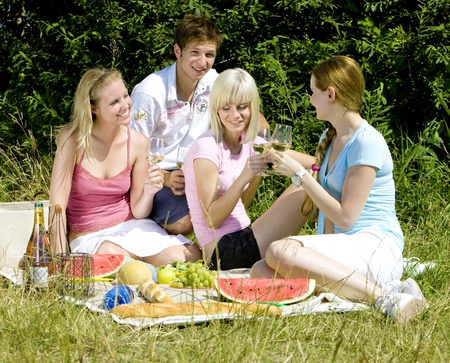leisure time: friends at a picnic