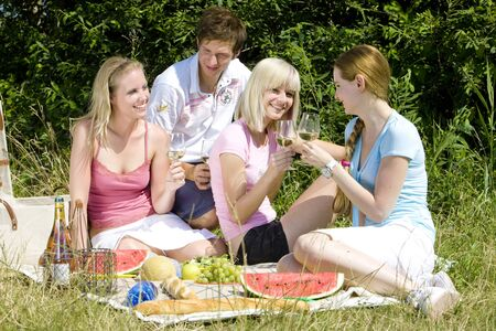 friends at a picnic Stock Photo - 9619912