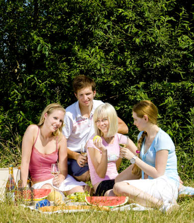 friends at a picnic Stock Photo - 9619892