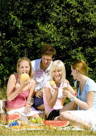 friends at a picnic Stock Photo - 9619868