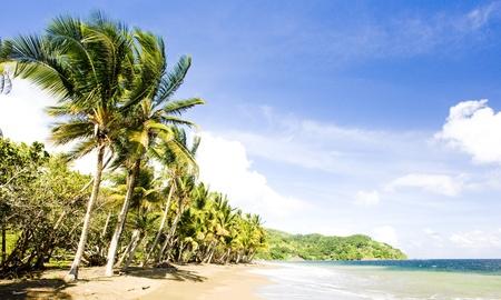 Pinfold Bay, Tobago photo