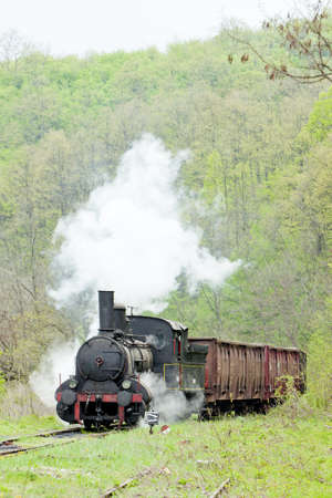 steam freight train (126.014), Resavica, Serbia Stock Photo - 9668463