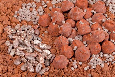 cacao beans: trufas de chocolate y cacao en cacao Foto de archivo