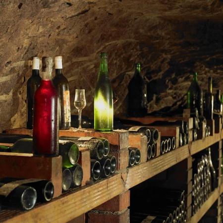 wine cellar, Bily sklep rodiny Adamkovy, Chvalovice, Czech Republic Stock Photo - 9744461
