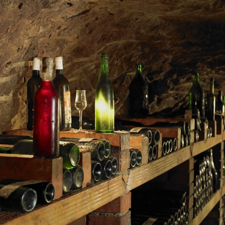 wineries: wine cellar, Bily sklep rodiny Adamkovy, Chvalovice, Czech Republic