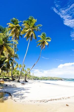 Cumana Bay, Trinidad Stock Photo - 9860419