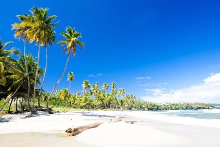 Cumana Bay, Trinidad photo