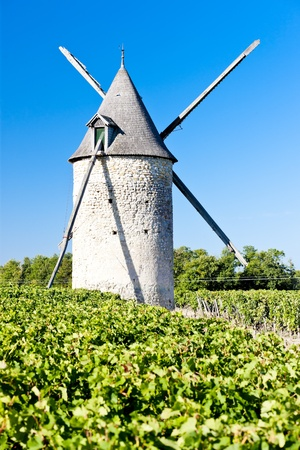 bordeaux region: windmill with vineyard near Blaignan, Bordeaux Region, France