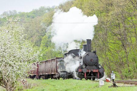 steam freight train (126.014), Resavica, Serbia Stock Photo - 9863630
